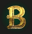 b golden letter vector image vector image