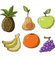 fruit symbol vector image