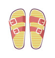 casual summer flip-flops isolated vector image