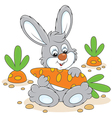 Bunny with a carrot vector image