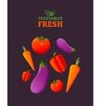 Vegetables fresh vector image