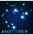 the sagittarius zodiac sign of the beautiful vector image vector image
