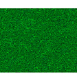 Artificial green grass vector image