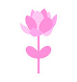isolated flower icon vector image