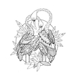 Flamingo bird coloring book for adults vector image