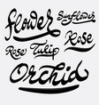 flower and orchid hand written typography vector image vector image