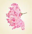 Sakura blossom polygons abstract flower vector image