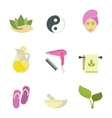 Spa beauty body care icons vector image