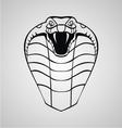 King Cobra Head vector image vector image