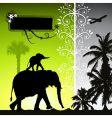 summer holiday elephants vector image vector image