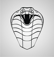 King Cobra Head vector image