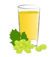 fresh grape juice vector image