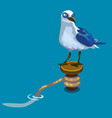 seagull standing on buoy on water background vector image