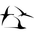 Set of Streamlined Birds vector image