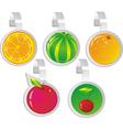 fruit wobblers vector image