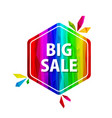 big sale offer rainbow tags vector image