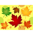 Seamless maple leaves fall colors pattern vector image