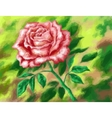 Flower Rose Low Poly vector image vector image