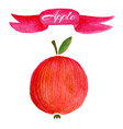 red apple logo design template food or fruit icon vector image