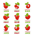 Apple cherry fruit and fresh juice collection vector image