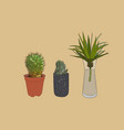indoor plants in pots sketch vector image