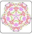 symmetry colorful pattern vector image