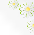 Three cutout chamomiles on grayscale Floral spring vector image