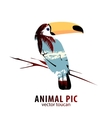 Toucan and palm trees vector image