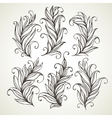 Feathers leaves Hand drawn vector image