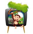Monkey hanging on branch on tv screen vector image