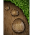 dew drops on a wooden background vector image