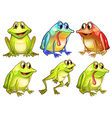 Six different frogs vector image vector image