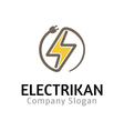 Electikan Design vector image