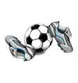 Football boots ball vector image