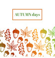 autumn background with acorns maple and oak vector image