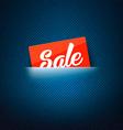 Sale label in poket card vector image