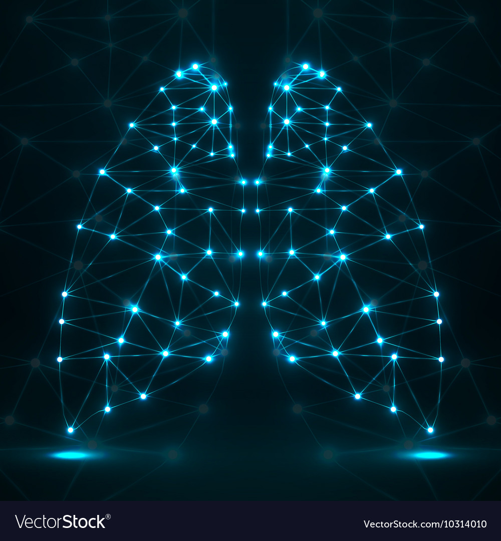 Abstract human lung network connections vector