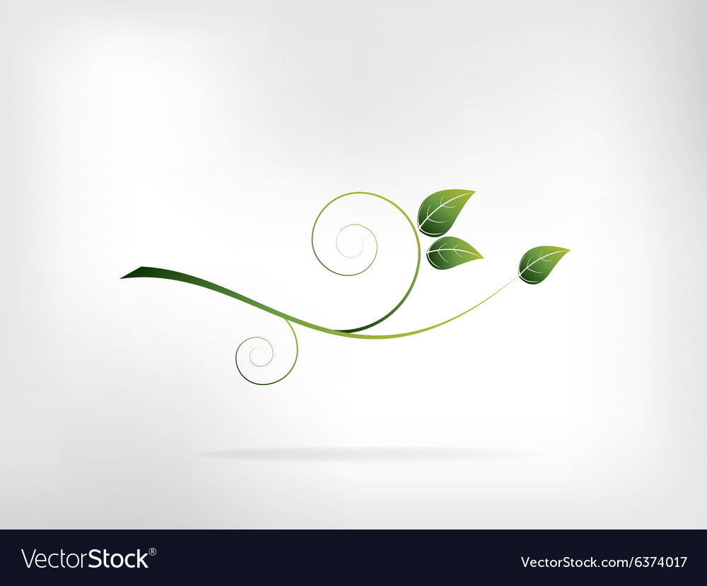Abstract background with floral ornament elements vector