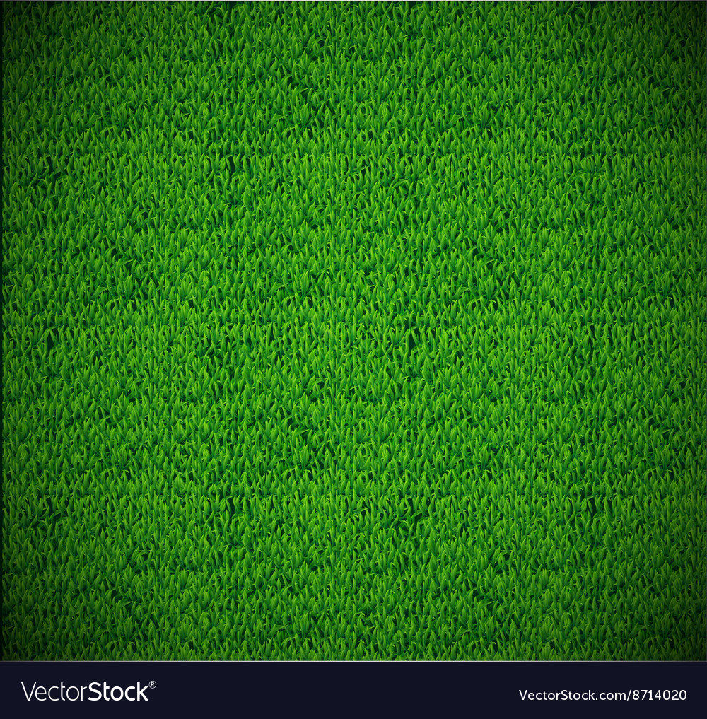 Grass texture eps 10 vector