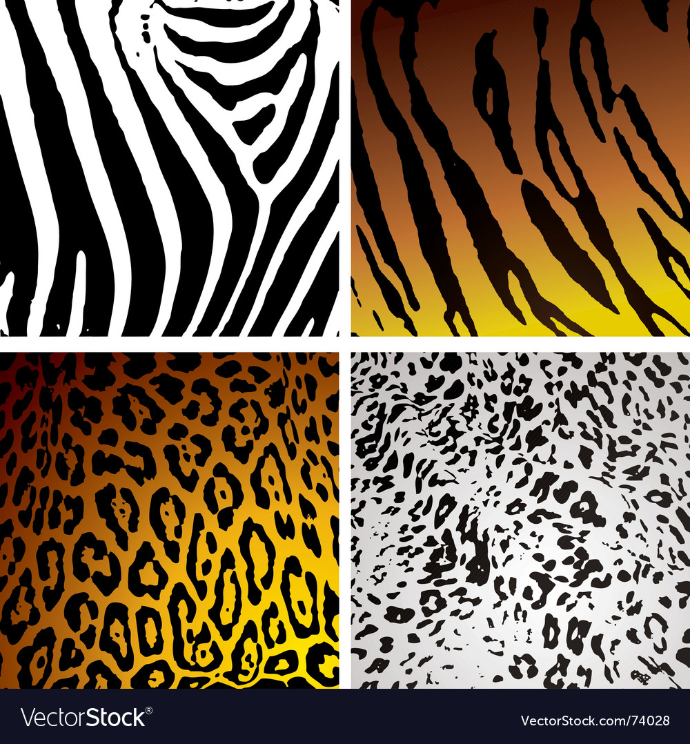 Animal skin variation vector