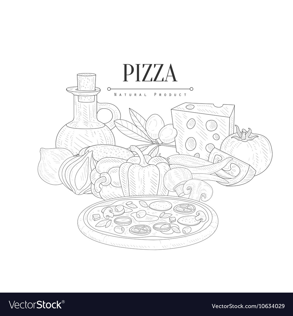 Pizza cooking ingredients still life hand drawn vector