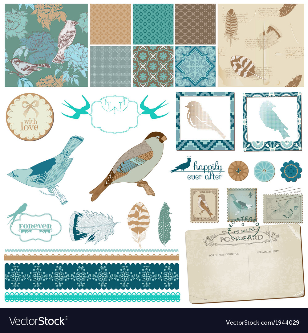 Vintage birds and feathers vector