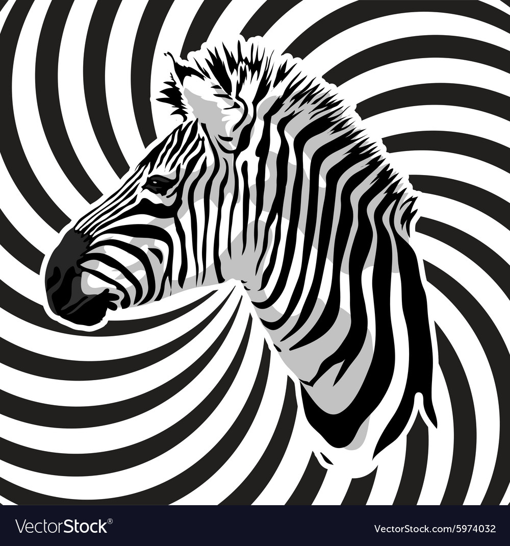 Zebra portrait on abstract strips background vector
