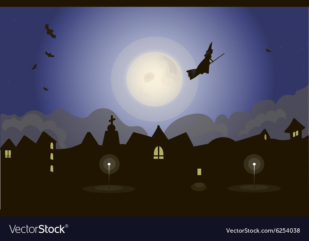 Witch on night sky vector