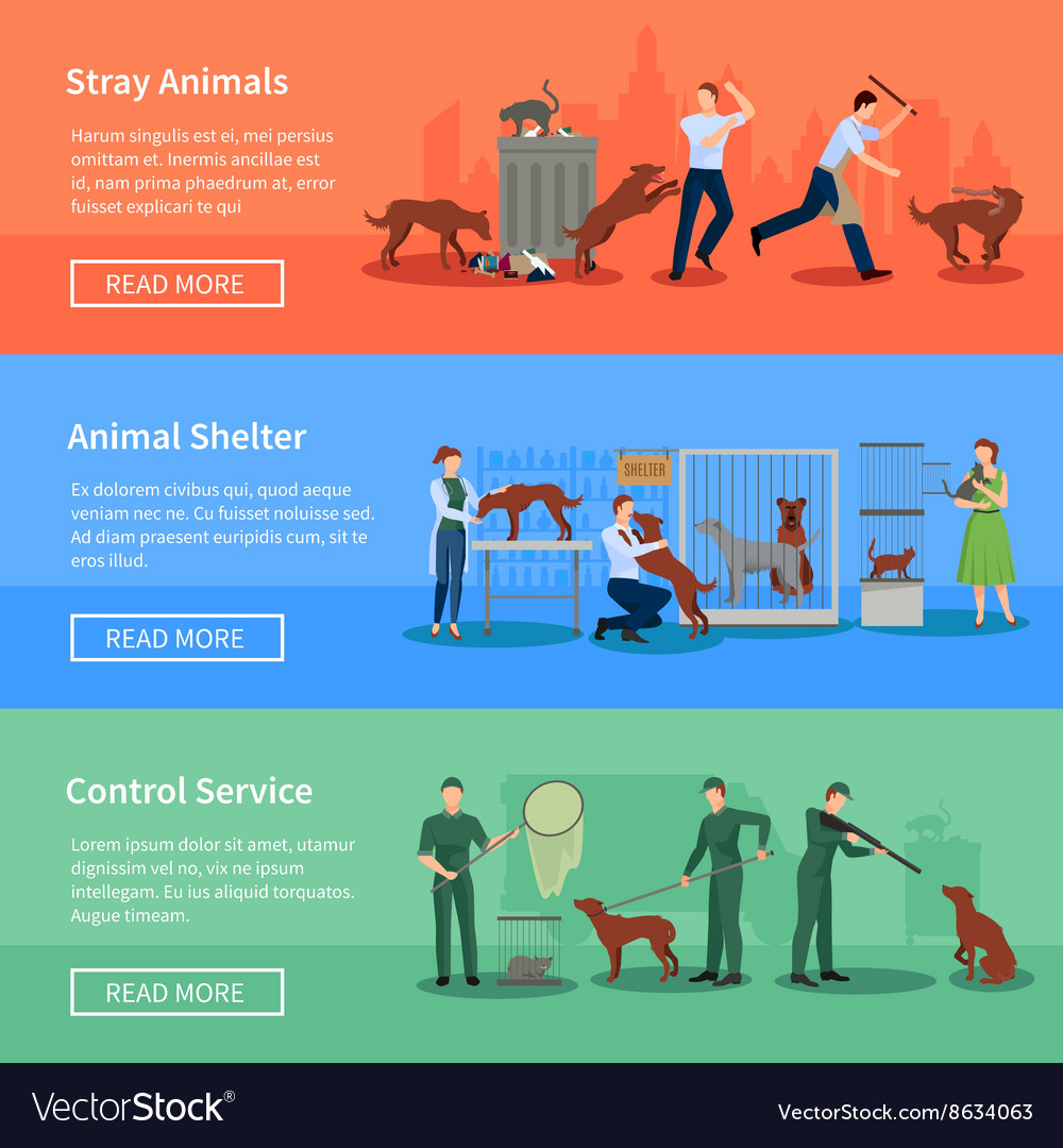 Stray animals 3 horizontal banners set vector