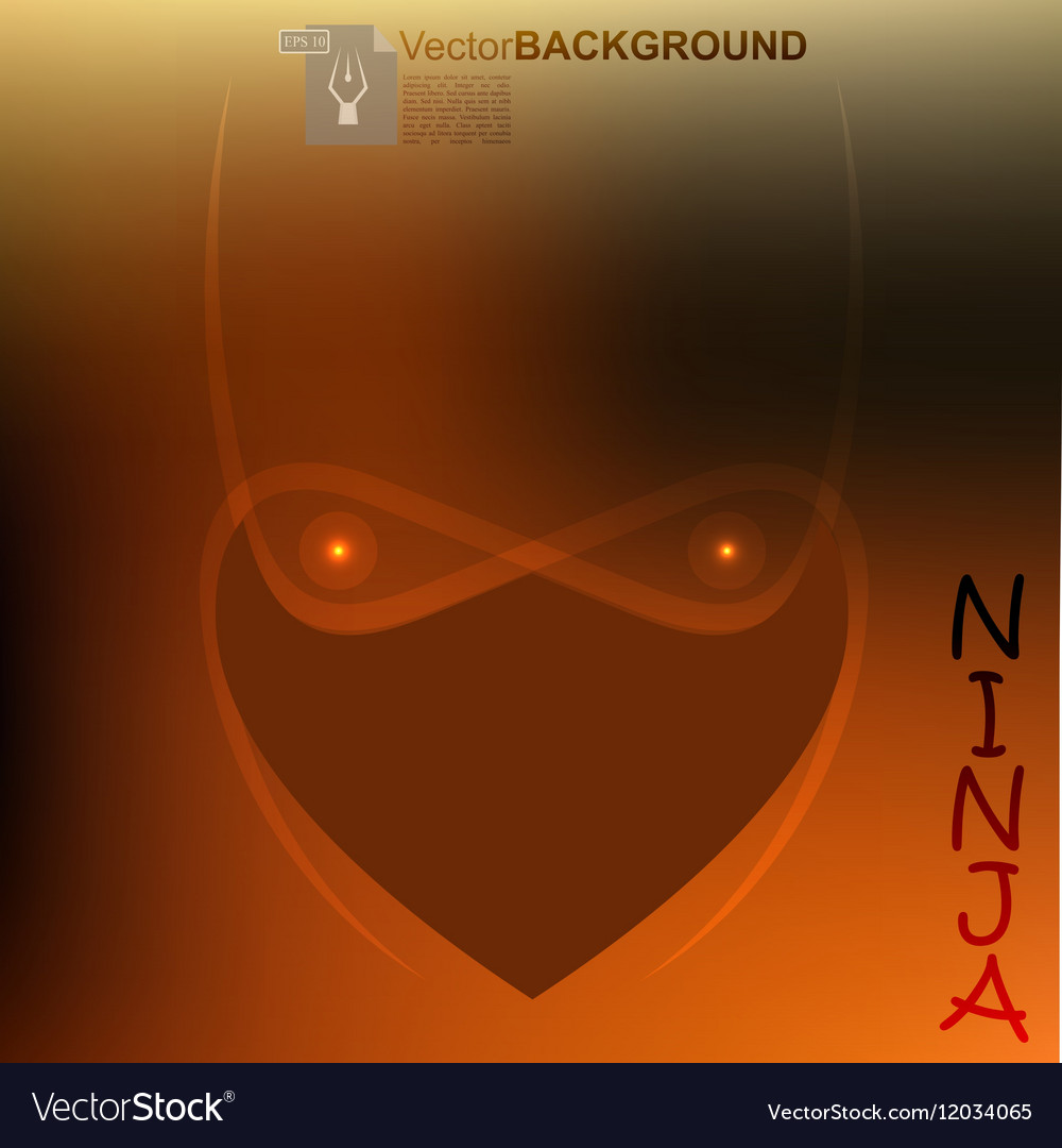 Ninja light face vector