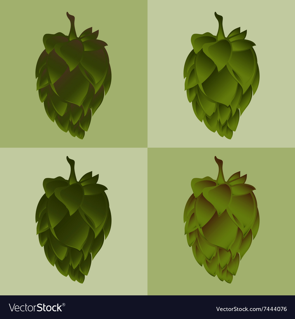 Hop flower beer ingredient icon set vector