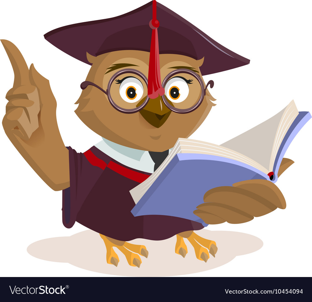 Owl teacher reading book vector