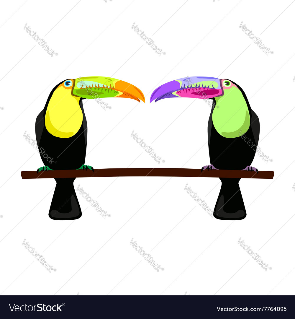 Two flat toucans vector