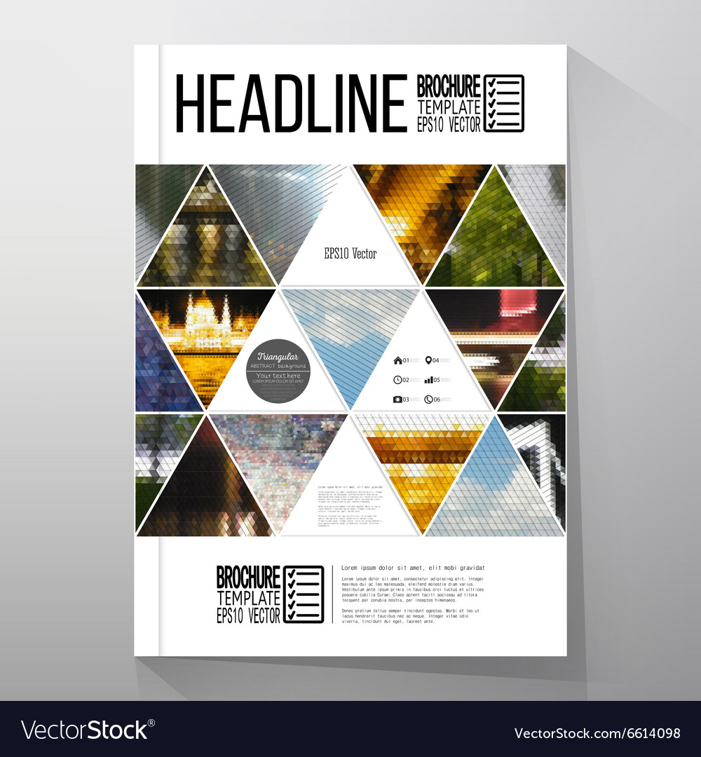 Business templates for brochure flyer or booklet vector